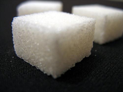 Les sucres naturels, vrai poison pour nos toutous