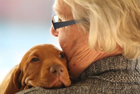 Adopter un animal pour garder le moral et la forme ?