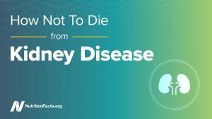Comment ne pas mourir d'une maladie rénale