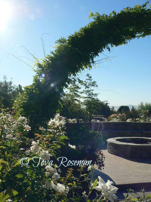 designing your garden with a view