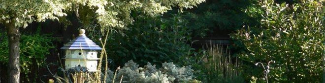 summer-garden-calendar