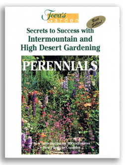 Perennials book cover by Tova Roseman