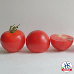 2018 Winner, tomatoes, All-America Selections