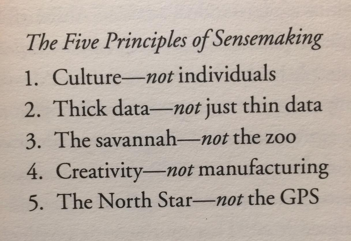 Sensemaking bygger på 5 principper.