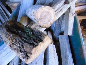 brandhoutzagen1