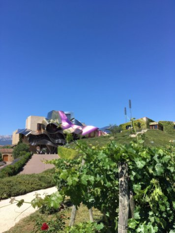 Alien hotel in between grape vines