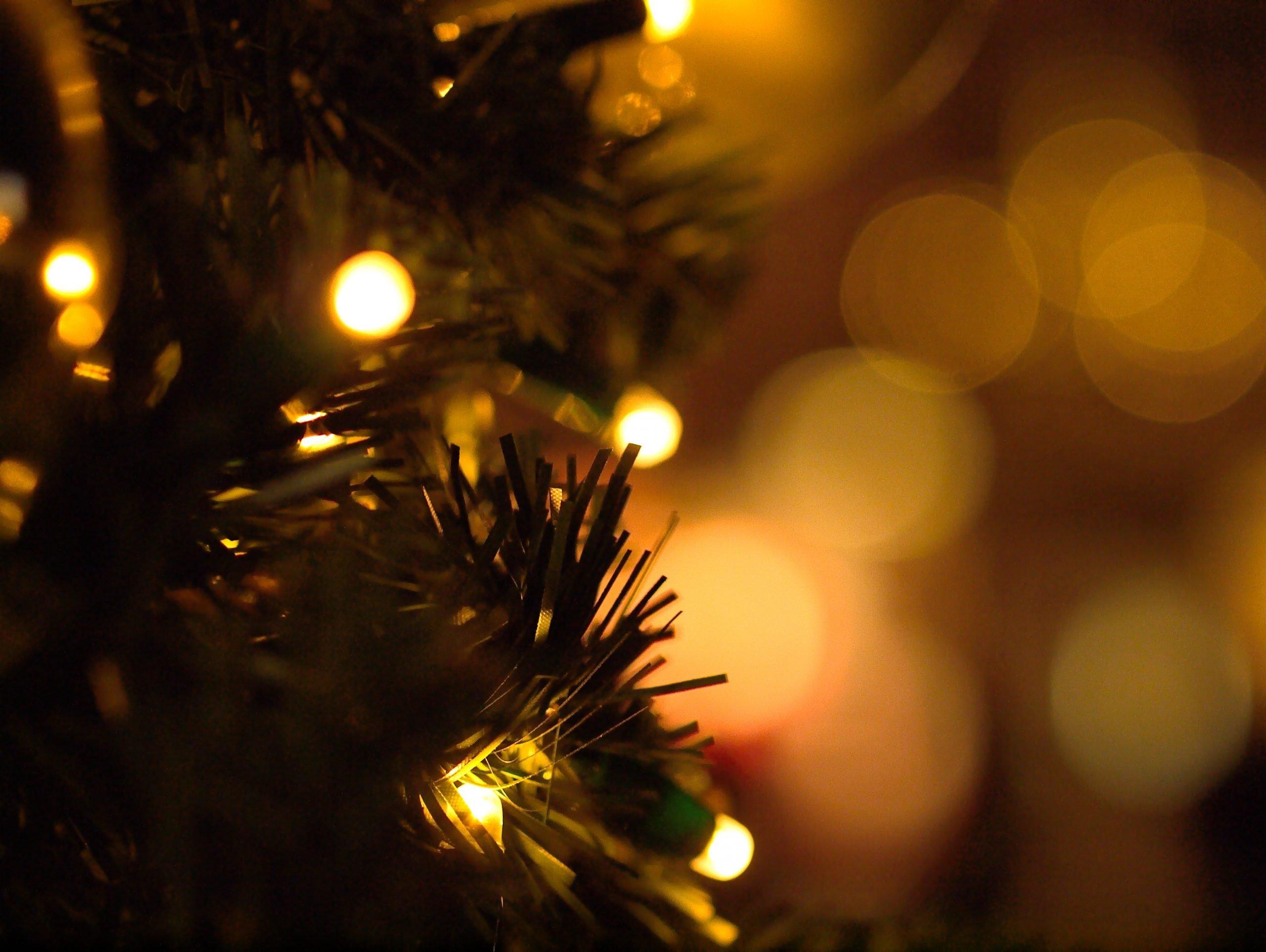 christmas-3845452