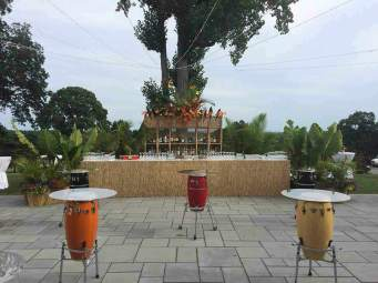 Havana-Tiki-Bar-with-Drum-Tables-and-palm-plants