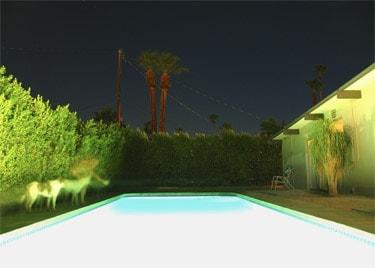 ghost_pool