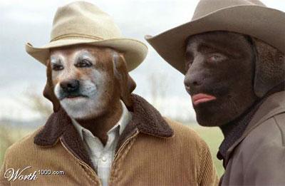 Brokeback_dogs