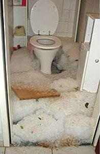 Toilethail