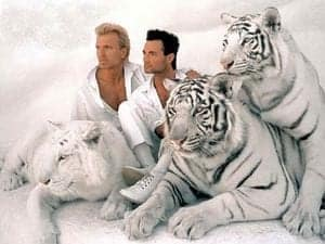 Siegfried and roy horn gay