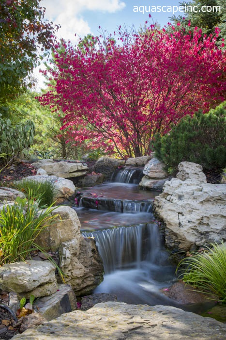 fall landscape features with