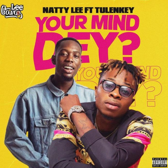 Natty Lee Your Mind Dey Ft Tulenkey