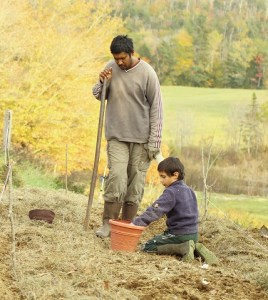 Anil planting garlic with Kieran