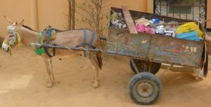 Mule garbage cart