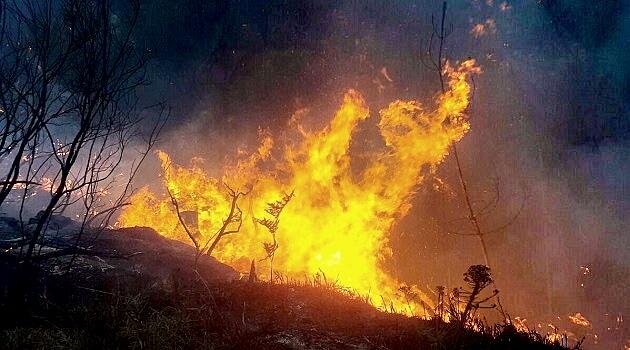 WC-Gargen-Route-Fires-HeraldLive.jpg