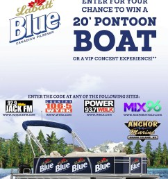 pontoon boat poster [ 1728 x 2304 Pixel ]
