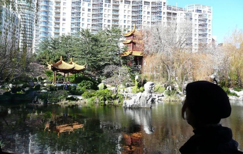Investor - Chinese Garden and Urban Development in Sydney Australia