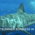 SHARKS IMPACT SUMMER BUSINESS IN SOUTHERN CALIFORNIA