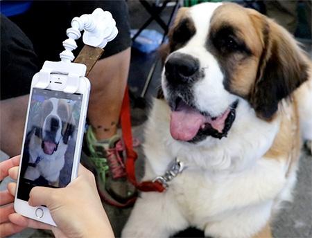 Dog Selfie Phone Attachment