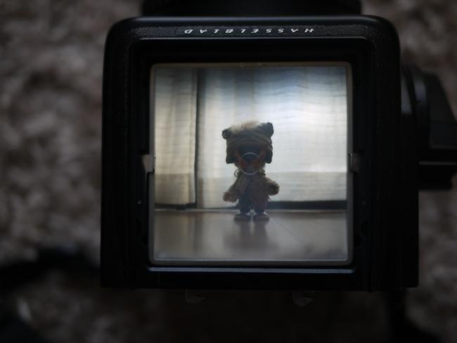 ハッセルブラッド:ブライトマットスクリーン