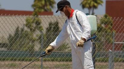شركة رش مبيدات بالاحساء