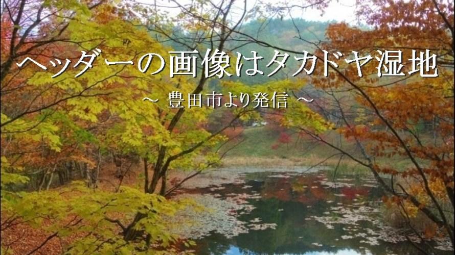 ヘッダー画像は「タカドヤ湿地」の紅葉です【豊田市 稲武】
