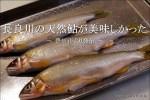 長良川の「天然鮎」はさすがに美味しかった【自宅】