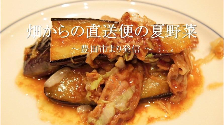 畑からの直送便の夏野菜とエビの料理【自宅】