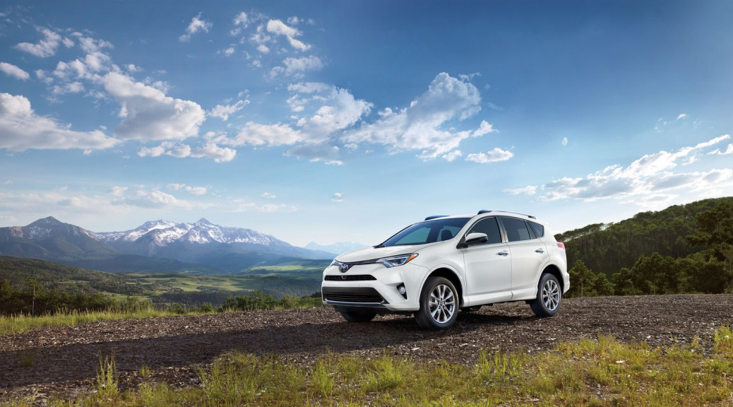 2017 Toyota RAV4 - safety adventures in Allentown, PA