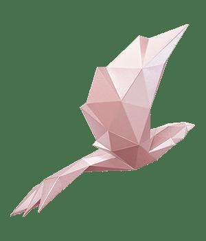 bird_pink