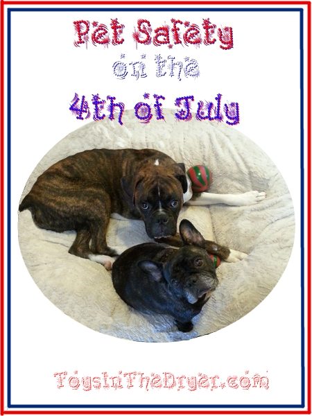 Pet Safety on the 4th of July