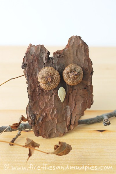 acorn crafts, bark owl