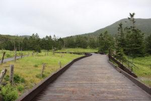 白樺湖,北八ヶ岳,登山計画