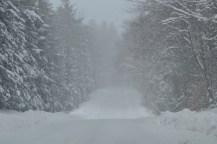 Suddenly, Narnia