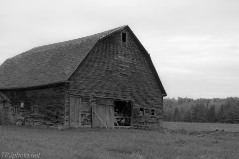 Monochrome Country Barn
