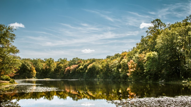 New England Fall Pond - Click To Enlarge