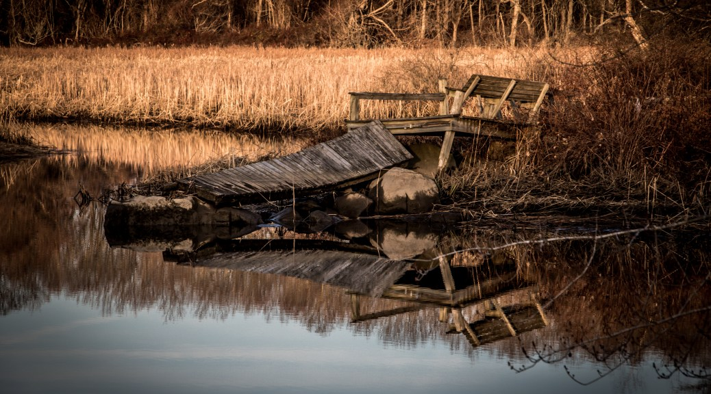 Old Dock In Marsh - Click To Enlarge