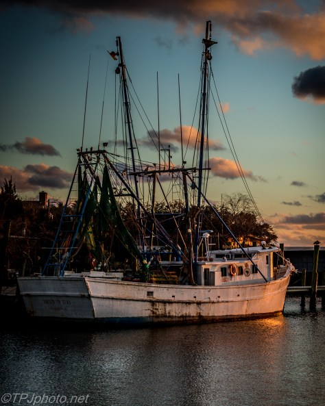 Fishing Boats Tied For The Night - Click To Enlarge