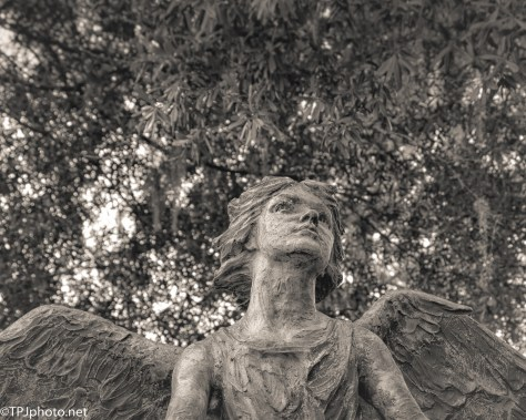 Angel For Children Lost - Click To Enlarge