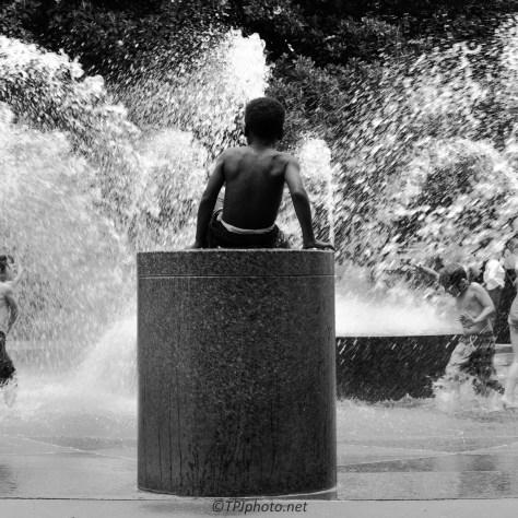 King Of The Fountain - Click To Enlarge