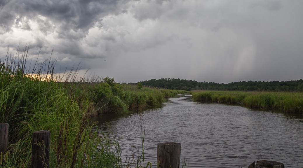 Rain Coming To A Marsh - click to enlarge