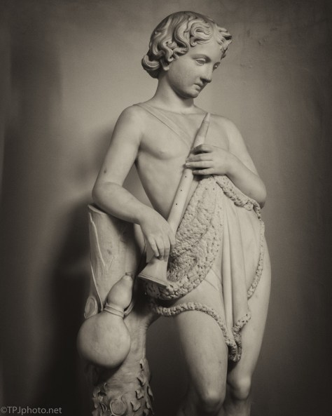 Statue, Private Collection, Charleston, South Carolina - click to enlarge