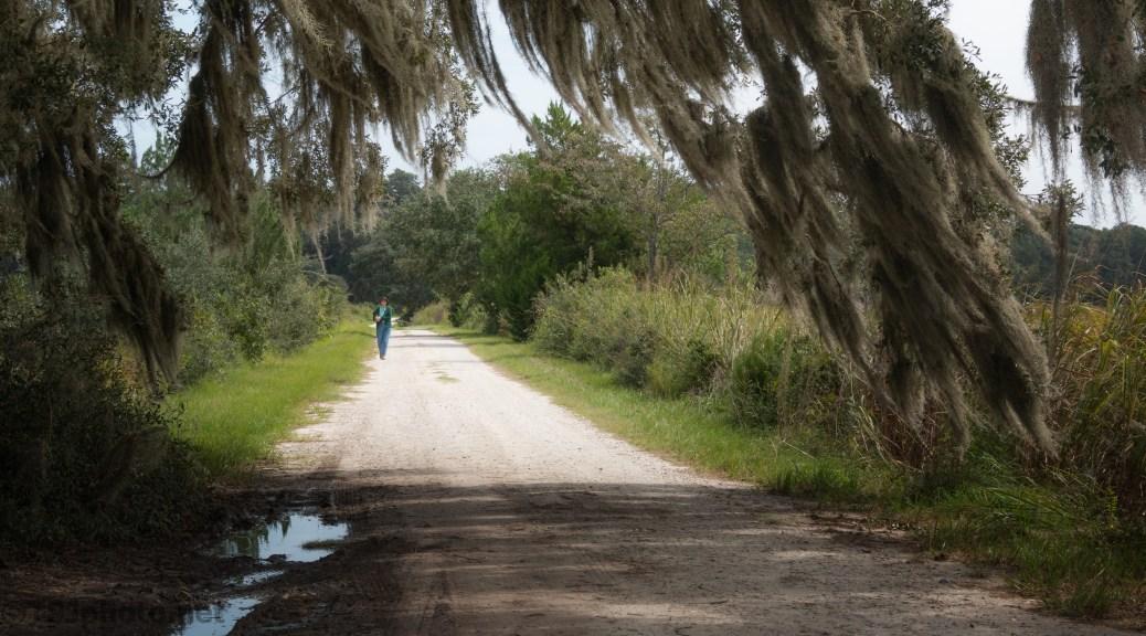 A Dirt Road