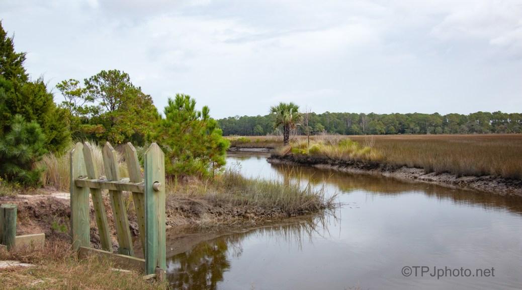 Fall Marsh Scene