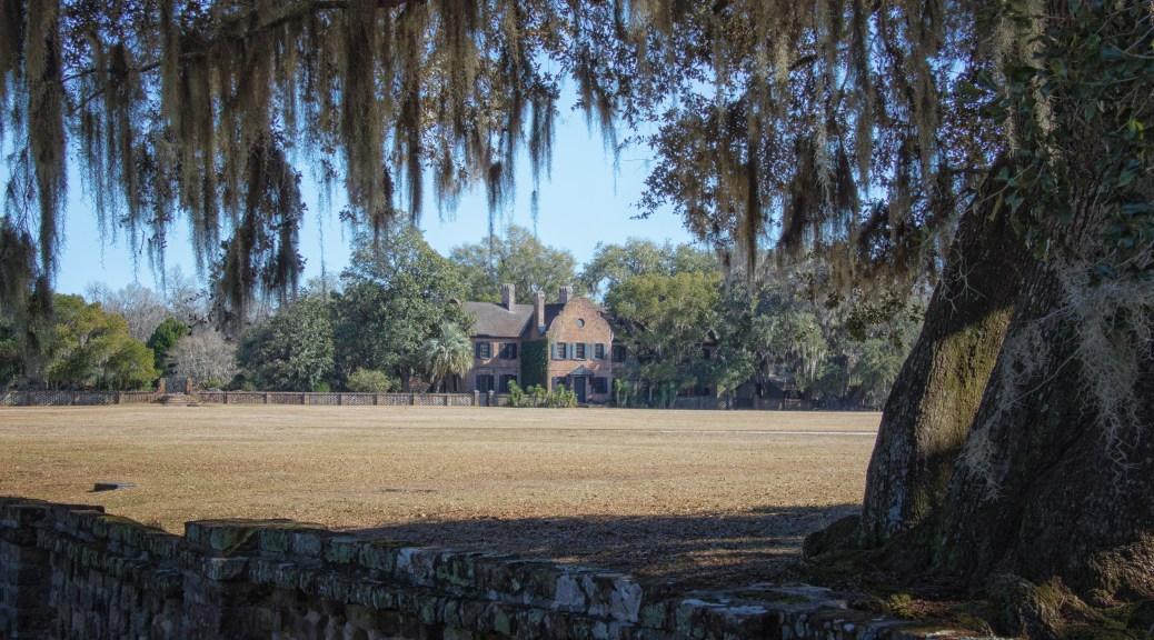 Walking By Middleton Plantation