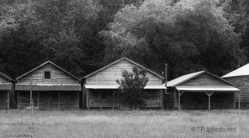 Camp Meeting Cabins