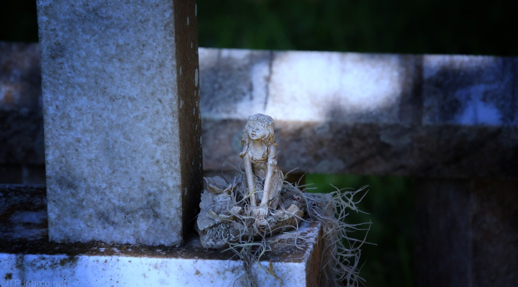 Found On A Walk, Old Charleston Cemetery