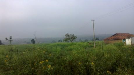 Udayagiri and Mysore 033